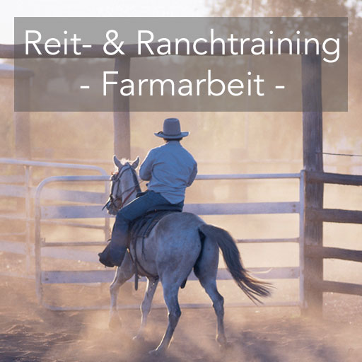TEQ Ranchtraining